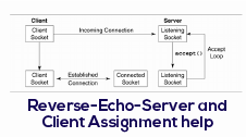 Reverse-echo-server and client Assignment Help